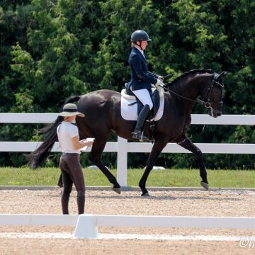 Cornerstone Dressage — Feng Starts Test