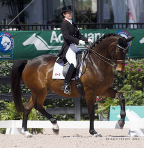 Dressage Canada:  Belinda Trussell Earns Record-Breaking Scores at Adequan Global Dressage Festival